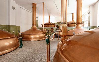 Pfälzer Brauereien trotzen dem Negativtrend